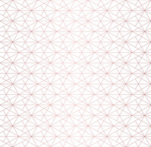 Rose Gold Pattern. Vector Geom...