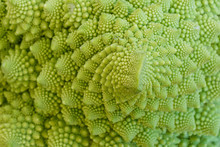 Close-up Of Natural Fractals Of Romanesco Broccoli (also Known As Roman Cauliflower, Broccolo Romanesco, Romanesque Cauliflower Or Simply Romanesco). Viewed From Above, Abstract Full Frame Photo.