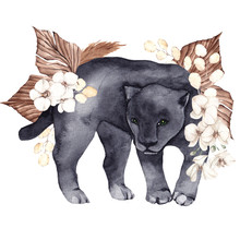 Watercolor Illustration With African Panthera And Tropical Leaves, Isolated On White Background