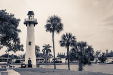 Lighthouse, Palm Trees And Hom...