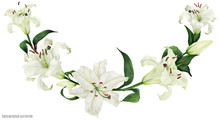 Tropical Floral Traced Watercolor Arc With Oriental White Lilies