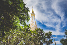 Low Angle View Of Trees Against Wat Phra That Phanom