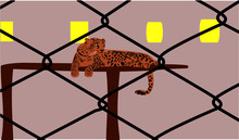 Vector Graphic Of A Big Cat Sitting On The Wooden Table Inside The Wire Cage.