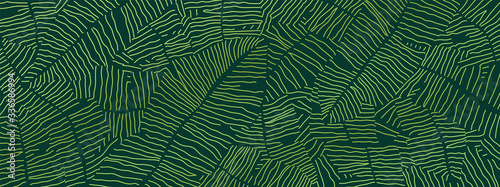 Tropical banana leaf Wallpaper, Luxury nature leaves pattern design, Golden banana leaf line arts, Hand drawn outline design for fabric , print, cover, banner and invitation, Vector illustration.