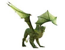 Green Dragon Isolated On White...