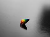 Fototapeta Tęcza - rainbow shell