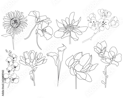 Obraz Continuous Line Drawing Set Of Plants Black and White Sketch of Leaves Isolated on White Background. Branch Leaves One Line Illustration. Vector EPS 10. - fototapety do salonu