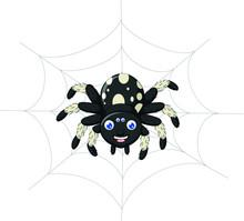 Black White Spider Hanging On Spider Web Cartoon