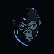 Face Of The Gorilla