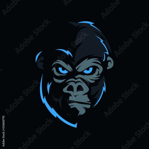 фотография face of the gorilla