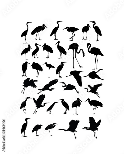 Cuadros en Lienzo Heron, Egret  and Stork Bird Silhouettes, art vector design