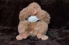 Soft Toy Monkey In A Medical Mask With TV Remote Control
