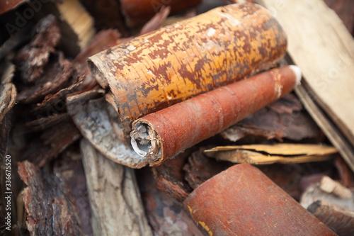 Obraz na plátně cutted off pieces of birch barks