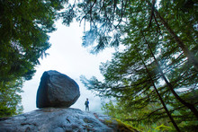 Woman Hiker Stands Next To A H...