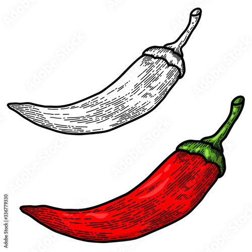 Tableau sur Toile Illustration of chili pepper in engraving style