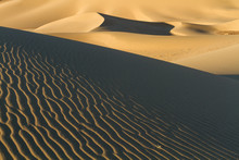 Ripples And Curves In The Sand...
