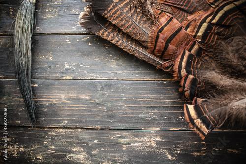 Fotografija Eastern Wild Turkey Feathers and Beard