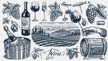 Vineyard And Wine Set. Sparkli...