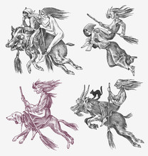 Witch Flies With A Broom And A Dog, A Goat And A Boar. Ancient Mythical Magic Characters Set. Engraved Monochrome Sketch. Hand Drawn Vintage Old Fortune Illustration.