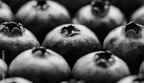 Fototapeta Blueberry patterned background obraz