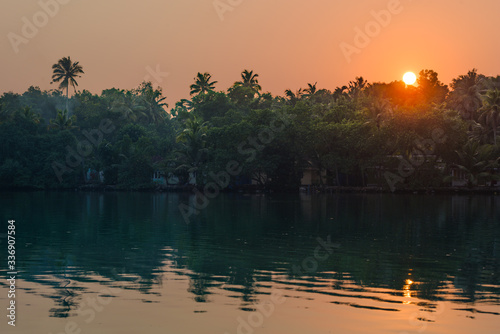 Cuadros en Lienzo Jungle of palm trees with atmospheric haze at sunset, along a freswater lake in