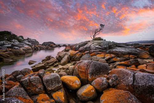 Valokuvatapetti Sunset at Binalong Bay, situated at the southern end of the beautiful Bay of Fires, East Coast, Tasmania, Australia