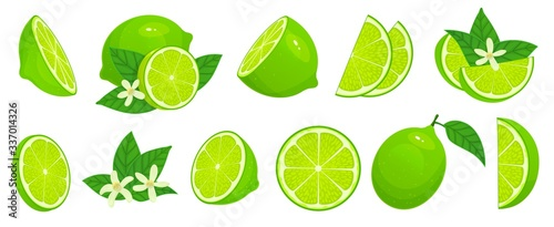 Cartoon lime. Limes slices, green citrus fruit with leaves and lime blossom isolated vector illustration set. Lime citrus fruit, green and juicy, juice vitamin organic