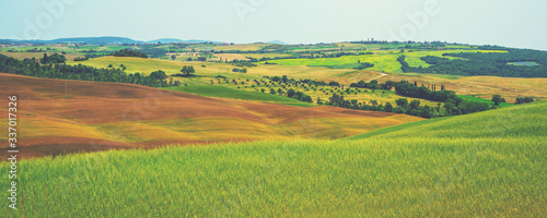 Fotografie, Obraz Tuscany village landscape on a sun day, Italy