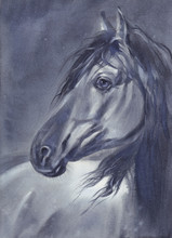 A Horse Portrait At Night Watercolor Painting