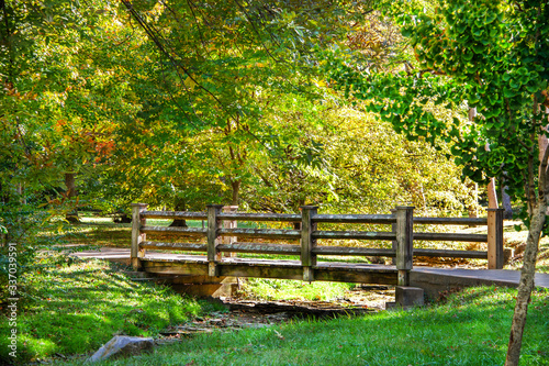 Fototapety, obrazy: Wooden bridge over rocky stream in woods in early autumn with light and shadow - selective focus