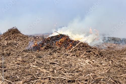 Fényképezés Soybean stubble, cornstalks and corn cobs burning in farm field