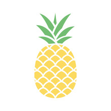 Pineapple Colorful Icon Isolat...