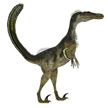 Velociraptor Dinosaur Side Pro...