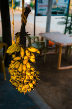 Raw Yellow Banana Branch In The Market