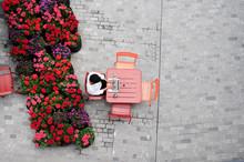 Business Flowers Terrace.