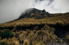 Rural Landscape In Mexico - Ro...