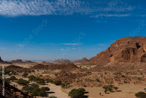 Natural rock formations , trees and small hut of nomad, Ennedi Plateau in Sahara Canvas Print