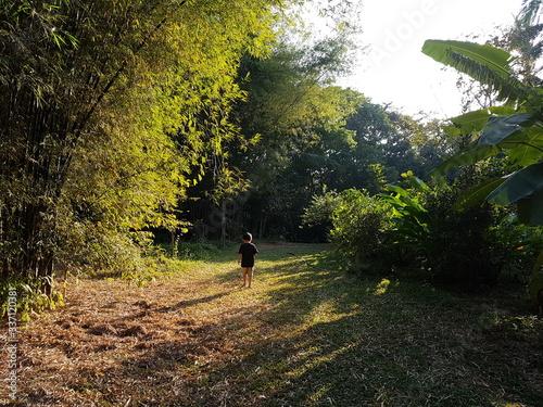Fototapety, obrazy: Rear View Of Boy Walking On Field