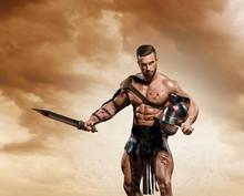 Gladiator Fighting On The Aren...