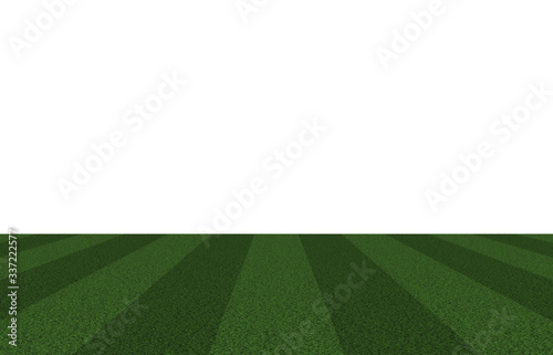 Sports field consisting of lawn stadium,Ground, soccer field, rugby, etc Wallpaper Mural