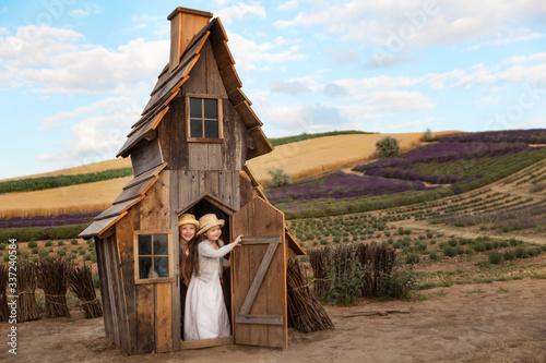 Fotografia, Obraz Happy kids having fun hiding in a fantasy wooden playhouse