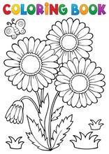 Coloring Book Daisy Flower Ima...