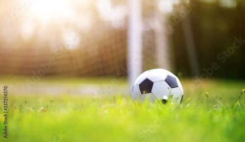 Black and whithe ball lying on green grass Obraz na płótnie