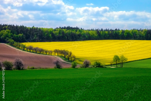 Photo Scenic View Of Agricultural Field Against Sky