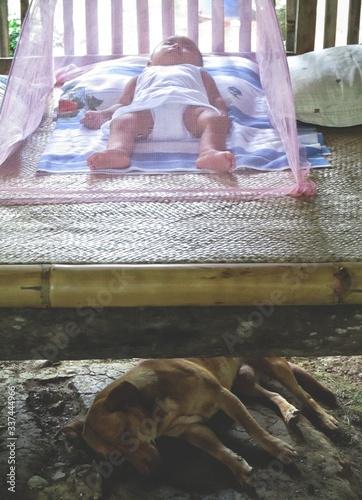 Baby Boy Sleeping On Bed Over Dog Lying At Floor Canvas-taulu