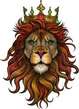 Vector Color Lion King Illustr...