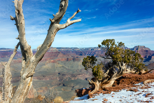 Fototapety, obrazy: Grand Canyon South Rim in winter journey traveller USA American nature