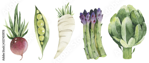 Fotografia Set of fresh vegetables white paper white paper