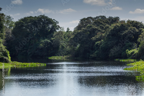 The lush Brazilian landscape offers ecotourism options at any time of the year Canvas Print