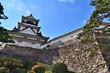 Leinwanddruck Bild - 日本100名城 春の高知城